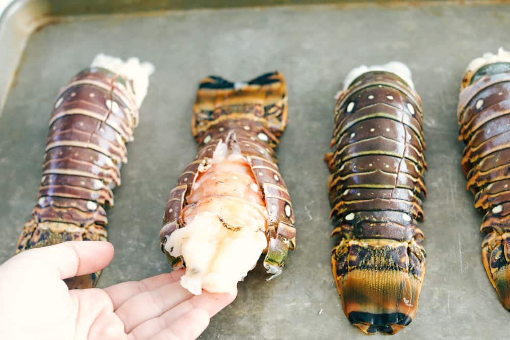 Lobster tails for cooking on a cookie tray.