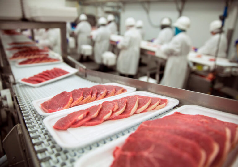 Seaboard to invest $100 million in pork plant