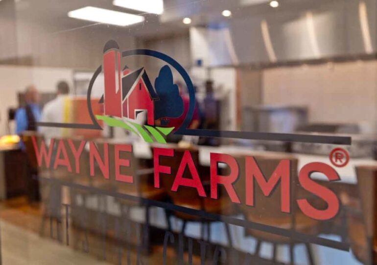 Wayne Farms to expand Mississippi poultry processing plant
