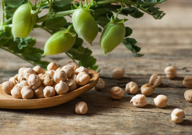 Ardent Mills expands as chickpea supplier