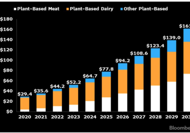 Global plant protein market could hit $162 billion by 2030
